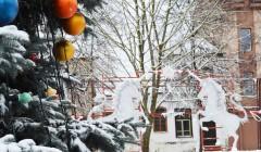 Miestų aikštės puošiasi kalėdinėmis eglėmis