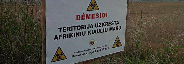 Šimonių miškas – AKM užkrėsta teritorija