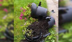 Kažkas išdaužė Kupiškio jaunimo centro kiemo gėlių vazonus