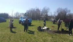 Kupiškio rajono policija talkino atnaujinant parką