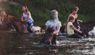 """Arklių maudynės – vienas gražiausių anykštėniškos """"Naktigonės"""" epizodų"""