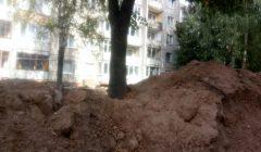 Aplinkos apsaugos departamentas: sužaloti Rokiškio medžiai