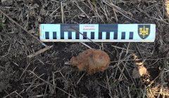 Trumpai: vokiška granata rasta darže, netoli namų