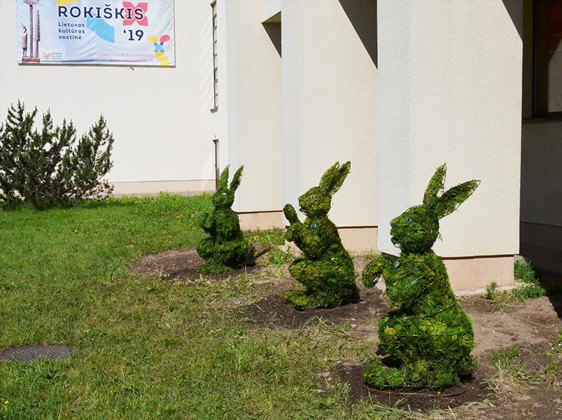 Šalia Rokiškio kultūros centro pritūpė trys kiškiai.