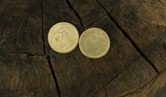 Keliauja po Rokiškio rajoną ir kala monetas