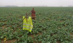"""Ūkininkų """"terba"""" – nepasitikėjimas šalies valdžia"""