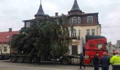 Trumpai: Rokiškio Nepriklausomybės aikštėje pastatyta kalėdinė eglė