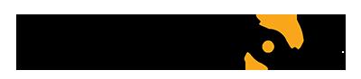 temainfo.lt logo
